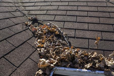 mantenimiento: Las hojas y los palos se acumulan en un valle de un techo.