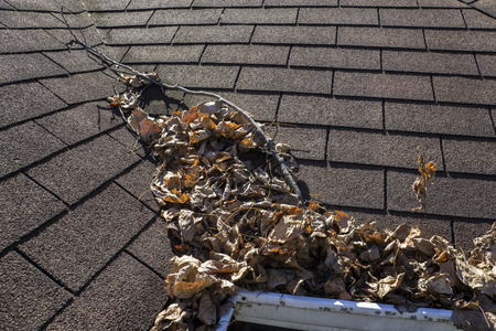 gutter: Leaves and sticks piling up in a valley of a roof. Stock Photo