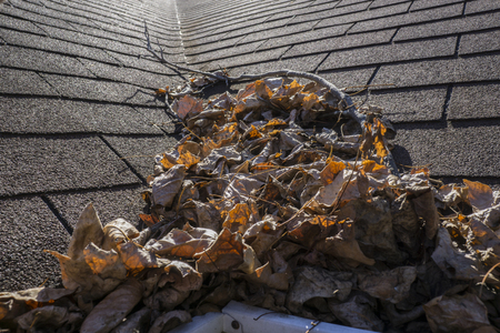 roof windows: Leaves and sticks piling up in a roof valley.