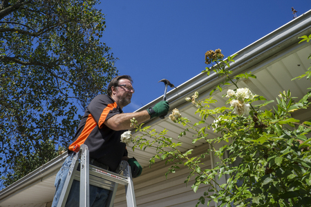 maintenance person: Worker hammering gutter spike in that came loose. Stock Photo
