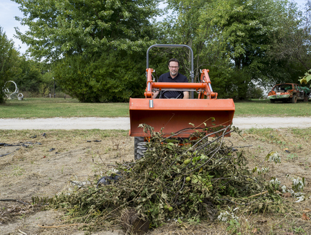 limbs: Tree trimmer dumping limbs into pile with tractor front end loader. Stock Photo
