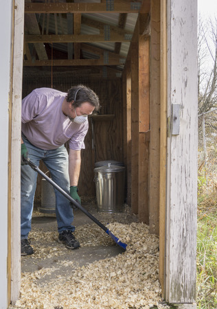 slaughtering: Chicken farmer cleaning a coop out to prevent Avian Flu and other diseases.