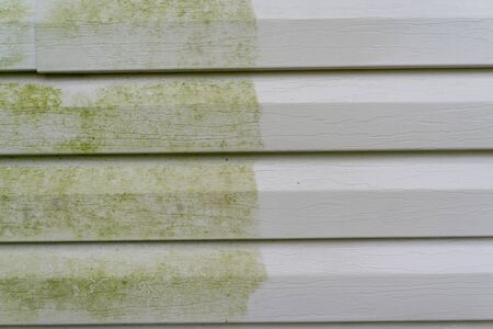 Before and after photo of vinyl siding with mold/algae.