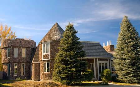 homeownership: Two-story upper class luxury home with pine trees. Looks like a castle!