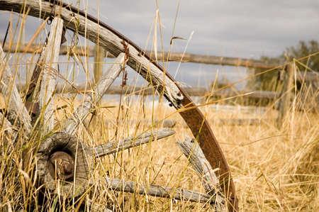 old wood farm wagon: Grain wagon wheel on a farm. Stock Photo