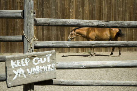 keep out: Horse in a corral with a keep out ya varmits sign.