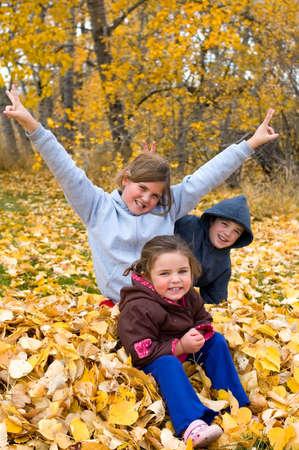 Een stelletje kinderen plezier hebben in sommige bladeren.