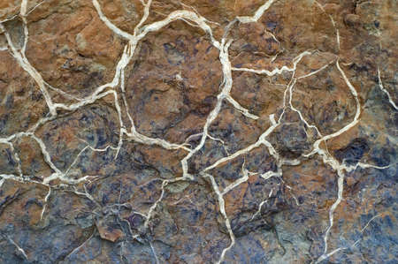 Cracked rock with quartz veins.