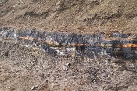 Coal deposit in a clay bank. Banco de Imagens