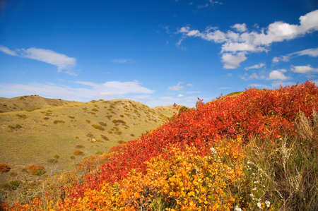 Lethbridge coulees in Autumn.