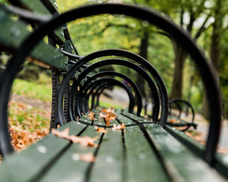 raindrops: Photo taken at a low vantage point of park bench which gives a tunnel effect when looking through the loops. Fallen leaves and raindrops add to the scene. Stock Photo
