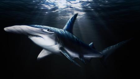 pez martillo: Pintado a mano natación gran tiburón martillo.