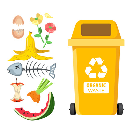 Rubbish bin for recycling different types of waste. Garbage container for organic and food trash. Vector illustration
