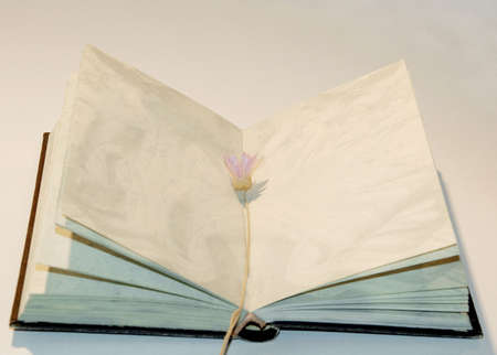 trashy: Open book with blank sheets