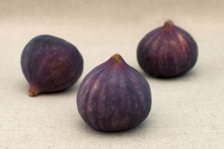 Three fresh fig fruit close-up photo