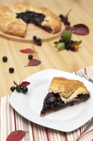 Slice of aronia pie, selective focus