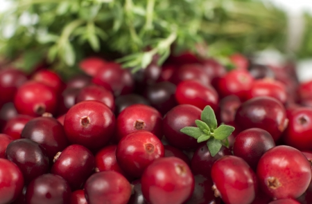 Close-up of fresh red cranberries and thyme Stock Photo