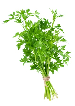 A bunch of fresh parsley, isolated on white. Selective focus Stock Photo