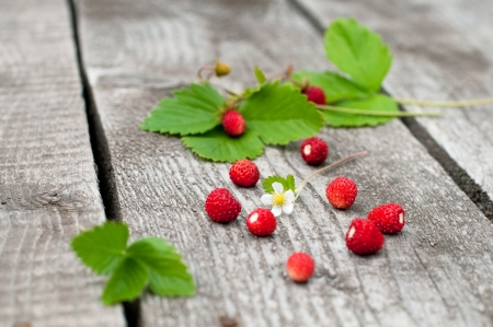 Wild strawberry on old wooden background, selective focus