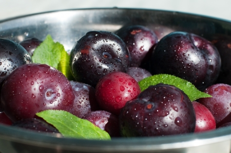 Close up of fresh wet plums in the bowl, selective focus