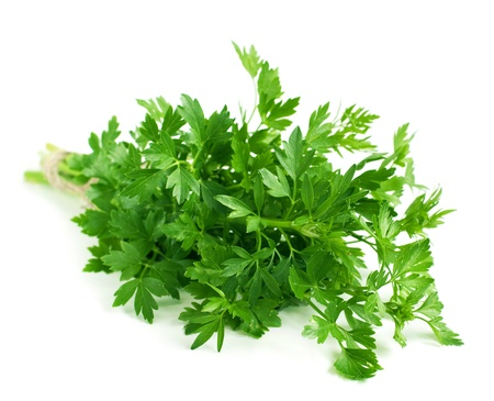 Bunch of fresh parsley, horizontal. Selective focus