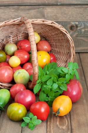 Basket of fresh tomatoes and basil on wooden table, rustic style, vertical