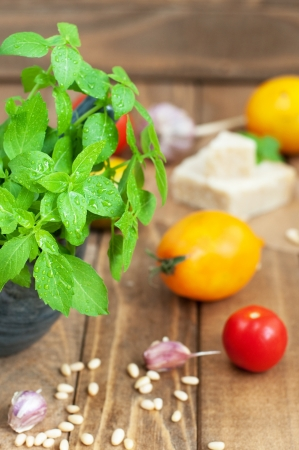 Food ingredients: basil, tomatoes, garlic and parmesan on wooden table, vertical, selective focus Stock Photo