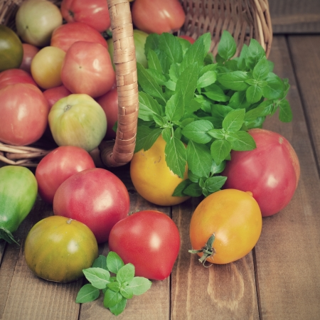 Close up of fresh tomatoes and basil on wooden table, retro style