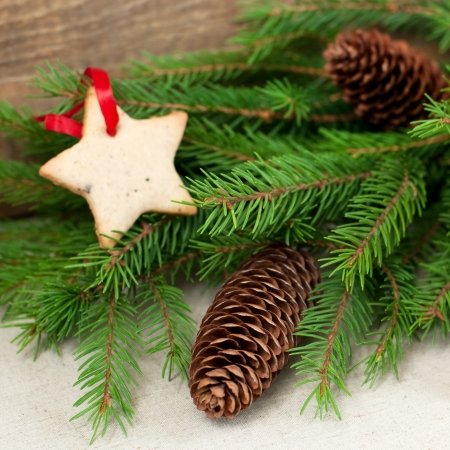 Christmas fir with gingerbread cookie and cones, selective focus Stock Photo - 22929225