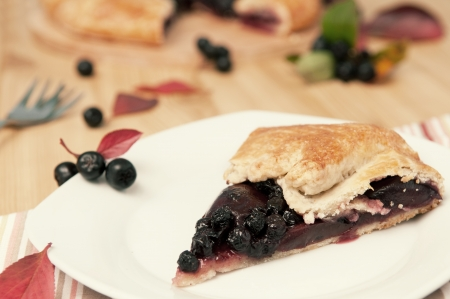 Close up of aronia and apple pie on plate, selective focus, retro style