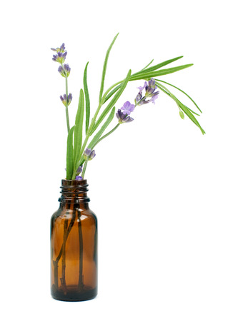 Lavender in bottle of essential oil isolated on white background Stock Photo