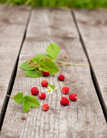 Wild strawberry on old wooden background
