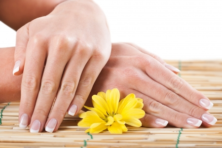 Close up of beautiful woman s hands with a flower