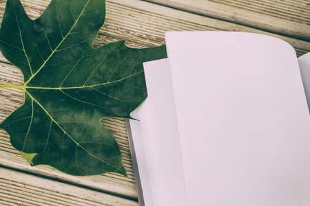 intentionally: Photo leaf and book on wooden table,intentionally toned image.