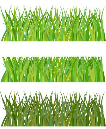 uncultivated: Set of grass. Vector illustration     Illustration