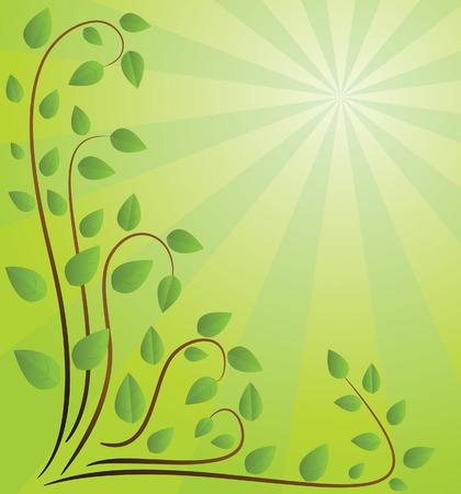 Green background with branches. Vector illustration Stock Vector - 3843383