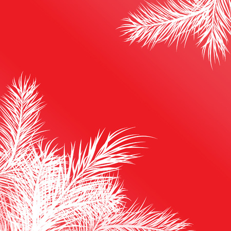 pine decoration: Framework from white pine branches. Vector illustration