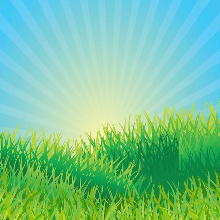 Ecological background. Vector illustration Vector