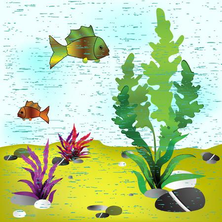 algas marinas: Mar de fondo. Ilustraci�n vectorial