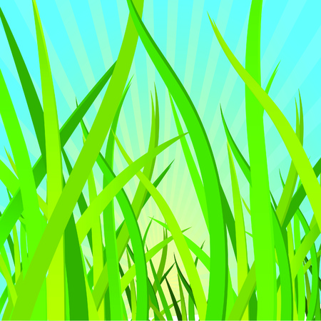 Ecological background with a grass. Vector illustration Stock Vector - 4945886