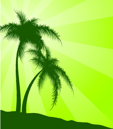 Green  background with palm trees. Vector illustration Vector