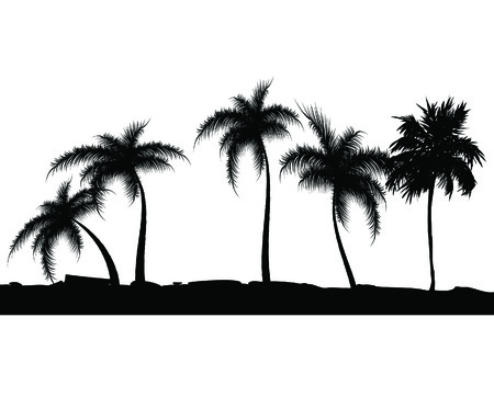 해외로: Summer background with palm trees. Vector illustration
