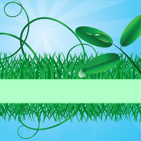 Ecological banner with a grass. Vector illustration Vector