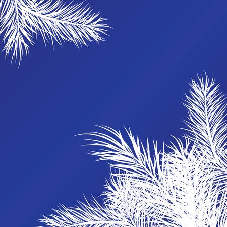 Framework from white pine branches. Vector illustration Vector