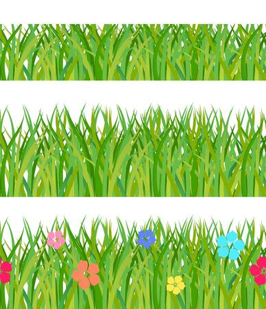 Collection seamless a green grass. Vector