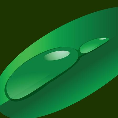 wallpapper: Dew drops on a leaf. Vector illustration