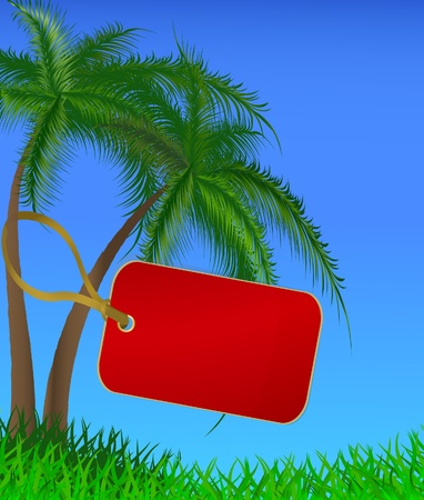 The red label hanging on a trunk of a palm tree Vector