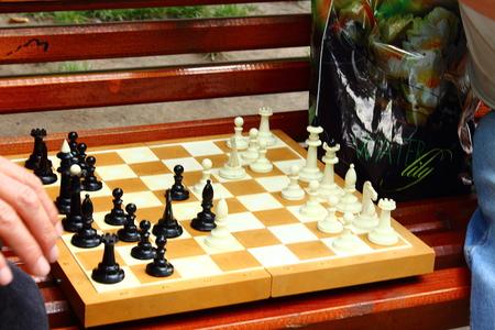 chessmen: chess game