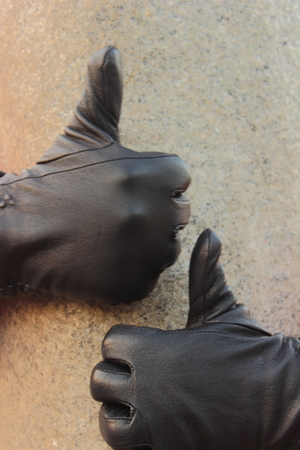okay: two hands in gloves show all okay