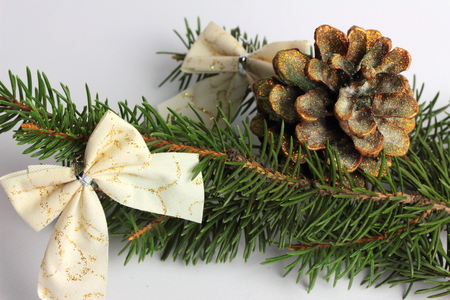mo�o blanco: on a white background lie near the green spruce Christmas cones and white bow